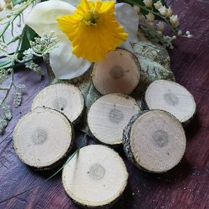 Other - Real wood slices. 7 pack. 2in